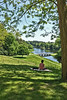 Painshill Park (Jainbow) Tags: painshillpark cobham surrey gothictemple crystalgrotto fivearchbridge jainbow