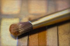 morning magic (Karon Elliott Edleson) Tags: makeup magic readyfortheday macro macromondays closeup brush eyeshadow texture canon canonmacro100mm macromademoiselle