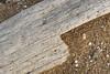 (Khuroshvili Ilya) Tags: pattern wood weathered sea beach crimea opuk sand outdoors spring nature
