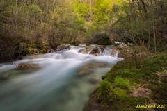 Nacedero del Urederra. (Ernest Bech) Tags: navarra river riu rio bosc forest bosque landscape longexposure llargaexposició saltdaigua waterfall
