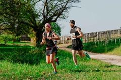 trail_delle_rocche_roero_2018_0399 (Ecomuseo delle Rocche del Roero) Tags: aprile ecomuseodellerocche edizione montà rocche trail uisp trailrunning roero