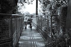à l'aventure (nicolaspetit7878) Tags: children vélo nb nikond5500 noiretblanc nature extérieur enfant pont blackwhite black chemin garçon fils son short back cinematic