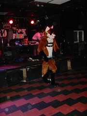 DSCN4531 (Yoru Tsukino) Tags: howl fursuit frusuiting furry nightclub party rave night furries dance toronto howltoronto