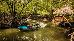 Baratang Island - Andaman, India (Kartik Kumar S) Tags: baratang island andaman india mangroove boat water transport canon 600d tokina 1116mm