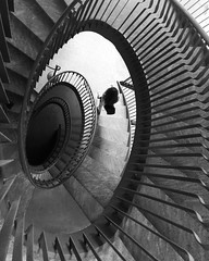 Every step we take that's synchronized (polar_plateau) Tags: staircase stairway stairs step view viewing viewfromthetop myview descending perspective geometric lines synchronized igers artofvisuals museum art palazzoreale milan design spiral stunning instagood pictureoftheday interiordesign architecture girl blackandwhite blackandwhitephotography
