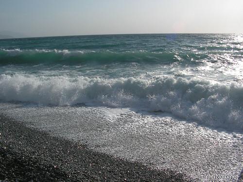 Чорне море InterNetri Ukraine 04