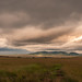 Masai Mara in front of a thunderstorm
