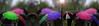 Tulipes sous les parapluies ... ( P-A) Tags: festivaldestulipes annuel fleurs tulipes espèces couleurs type origines pays visiteurs touristes photographes gatineauottawa beau printemps photos simpa© jesuisvenuevousdire