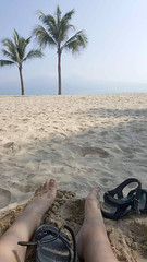 Dreaming of an endless summer (Roving I) Tags: barefeet whitesand feet footwear bitis sandals beaches palmtrees lifestyle leisure danang tourism travel vertical vietnam