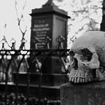 Skull Graveyard thumbnail