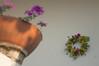 Ψίνθος (Psinthos.Net) Tags: ψίνθοσ psinthos mayday πρωτομαγιά μάιοσ μάησ άνοιξη may spring afternoon απόγευμα απόγευμαάνοιξησ ανοιξιάτικοαπόγευμα wreath στεφάνι μαγιάτικοστεφάνι γλάστρα pot flowers λουλούδια μώβλουλούδια purpleflowers