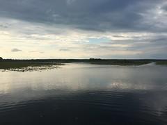 Lake Iamonia @ Bull Headley Landing Leon Co FL (3) (POsrUs) Tags: ©lancetaylor posrus florida leoncounty lakeiamonia bullheadleylanding