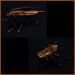 9 - Paris, Musée du Quai Branly - Insectes, Japon, Bambou et brindilles, Vers 1930 (melina1965) Tags: îledefrance paris may mai 2018 7èmearrondissement 75007 nikon d80 mosaïque mosaïques mosaic mosaics collages collage macro macros bois wood sculpture sculptures