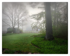 Fogbound (Timothy Valentine) Tags: 2018 outback 0518 fog home eastbridgewater massachusetts unitedstates us