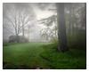 Fogbound (Timothy Valentine) Tags: 2018 outback 0518 fog home eastbridgewater massachusetts unitedstates us