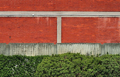 rosso (Rino Alessandrini) Tags: muro divisione siepe mattoni industriale cemento fabbrica giardino urbano rosso verde città edificio geometrie wall division hedge bricks industrial cement factory garden urban red green city building geometries