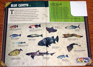 Aquarium of the Pacific Pamphlet (1)