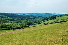 AhrSteig 4 (rbrands) Tags: wanderung arhtal eifel wanderer lind rheinlandpfalz deutschland de