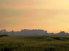 W 1 (BENPAB) Tags: stoney creek cherry cob sands humber east yorkshire southern holderness estuary inlet sunset