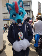 """Leeds furmeet May2018 • <a style=""""font-size:0.8em;"""" href=""""http://www.flickr.com/photos/97271265@N08/41348966445/"""" target=""""_blank"""">View on Flickr</a>"""