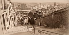 Liège du haut des escaliers de la Montagne de Bueren, Belgium (claude lina) Tags: claudelina liège belgium belgique belgië escaliers stairs montagnedebueren paysage landscape meuse