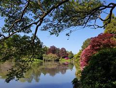 2018 0507 538 (SGS8+) Sheffield Park (Lucy Melford) Tags: samsunggalaxys8 sheffield park lake