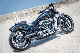 Harley Davidson - La Flotte