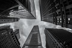 Financial District (Brandon Godfrey) Tags: nyc newyorkcity manhattan financialdistrict blackandwhite monochrome buildings city urban usa unitedstatesofamerica unitedstates bigapple