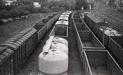 20052018029 (samitrofanov) Tags: svema 25025 film home develop minoltax700 train