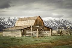 John Moulton Barn (JGemplerPhotography) Tags: barns oldbarns mormonrow building tetons
