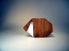 Guinea Pig - Paul Jackson (Rui.Roda) Tags: origami papiroflexia papierfalten porco da índia guinea pig paul jackson