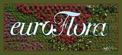 Euroflora - 1 (cienne45) Tags: euroflora euroflora2018 flaralies internationalflowershows parksofnervi nervi genova genoa genovanervi fiori flowers carlonatale cienne45 natale floralie exhibition italy