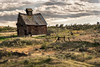 Eastern Oregon Shack (Michael Brandt Photography) Tags: eastern or oregon shack shed desert thedalles columbia gorge