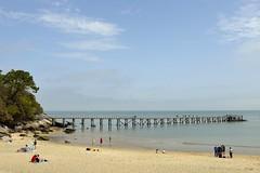 Plage des dames - Ile de Noirmoutier (ptit fauve) Tags: noirmoutier france 85 iledenoirmoutier ile plage mer sable vendée estacade bois boisdelachaise nikon nikond800 2470mmf28 littoral ciel bleu