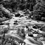 Rapids of the Merced River (Black & White, Yosemite National Park) thumbnail