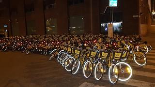 City Bikes at Flow Festival