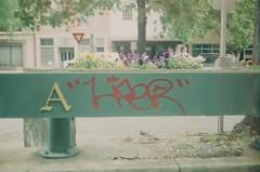 (bearfoxwolfdeer) Tags: augusta augustaga film 35mm expiredfilm canonet ql17 giii kodak kodakgold200 overexposed overexposure northaugusta