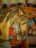 Vintage Carousel Horse (Photographybyjw) Tags: vintage carousel horse completely restored use early century north carolina photographybyjw rural country old hand made usa