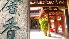 Parts Unknown (MrTheEdge7) Tags: singapore singaporesingapore southeastasia asia global globe temple chinese buddhist buddhism religion plant plants tree trees script asian