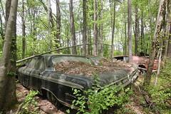 IMG_5809 (mookie427) Tags: urbex urban explore exploration explorers exploring ue derelict abandoned decay decayed ruin ruined car graveyard scrapyard old junkyard rusty rusted classic cars city georgia usa