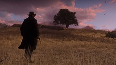 Red-Dead-Redemption-090518-021