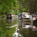 Basingstoke Canal Frimley Lodge Park - Mytchett 12 May 2018 024 thumbnail