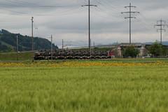 SBB Lokomotive Re 4/4 II 11329 bzw. 420 329 - 5 mit Panzerzug 69946 T.hun G.B - B.ure C.asernes ( 134 m - 474 t ) mit Schützenpanzer Spz 2000 bei Kiesen im Kanton Bern der Schweiz (chrchr_75) Tags: christoph hurni schweiz suisse switzerland svizzera suissa swiss chrchr chrchr75 chrigu chriguhurni chriguhurnibluemailch albumzzz201805mai mai 2018 albumbahnenderschweiz albumbahnenderschweiz20180106schweizer bahnen bahn eisenbahn train treno zug hurni180513 kantonbern kanton bern juna zoug trainen tog tren поезд lokomotive паровоз locomotora lok lokomotiv locomotief locomotiva locomotive railway rautatie chemin de fer ferrovia 鉄道 spoorweg железнодорожный centralstation ferroviaria panzer armure armatura 鎧 tank militär schweizer armee landesverteidigung
