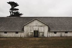 Pierce Point Ranch (SkylerBrown) Tags: abandoned architecture barn creepy cypress overcast piercepointranch pointreyes rural tree