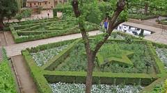 DSCF5700 Palacios Nazaríes, Alhambra, Granada (Thomas The Baguette) Tags: granada spain granadaspain espagne espana alhambra nesrid nesridpalace patiodelosleones lionfountain comares moorish fountains architecture gardens machuca alcazaba