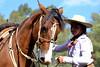 La nena y su gateado (Eduardo Amorim) Tags: cavalos caballos horses chevaux cavalli pferde caballo horse cheval cavallo pferd crioulo criollo crioulos criollos cavalocrioulo cavaloscrioulos caballocriollo caballoscriollos pasodeldragón plácidorosas cerrolargo uruguay uruguai sudamérica südamerika suramérica américadosul southamerica amériquedusud americameridionale américadelsur americadelsud cavalo 馬 حصان 马 лошадь ঘোড়া 말 סוס ม้า häst hest hevonen άλογο brazil eduardoamorim