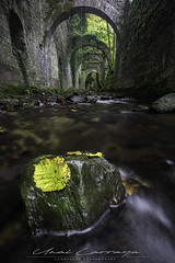 Recuerdos otoñales. (Fotografias Unai Larraya) Tags: navarra paisajes ngc fabricadearmas eugi largaexposición agua río cascadas otoño hojas roca