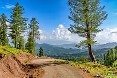 Trek (bilalqasim) Tags: nikoncameras nikond750 nikontop travel kashmir landscape landscapephotography travelphotography gilgitbaltistan tourism
