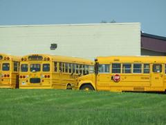 Freeman Bus Corp. # (ThoseGuys119) Tags: freemanbuscorp schoolbus watertownny thomasbuilt freightliner fs65 c2 saftliner yellowbumpers
