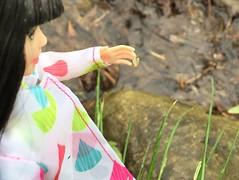 Look!  A little snail (Foxy Belle) Tags: doll skipper babysitter rain coat sparkle girls asian outside rainy